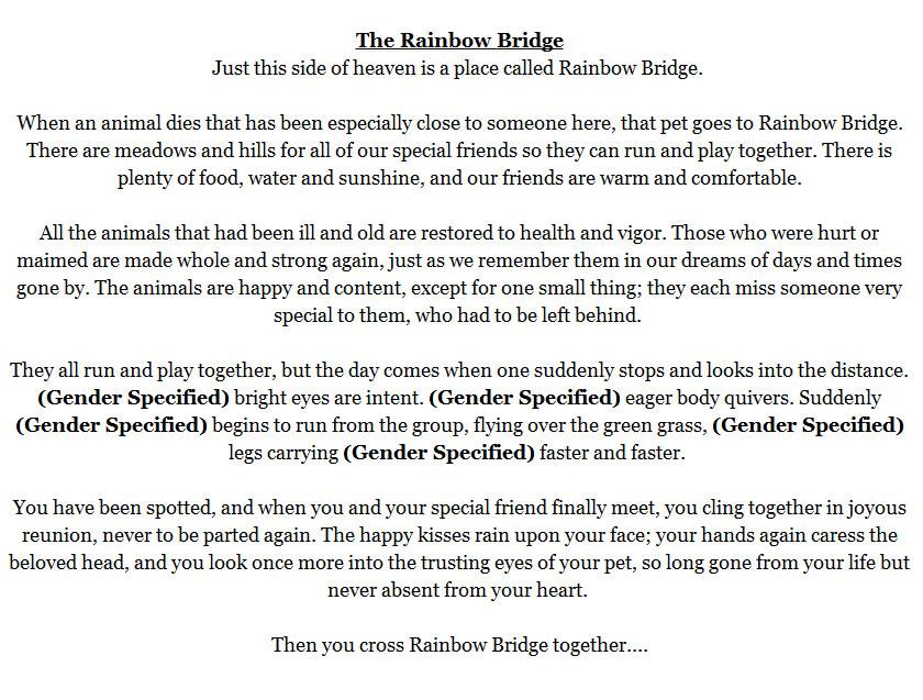photograph relating to Rainbow Bridge Pet Poem Printable identify Middle Photograph Rainbow Bridge Pet dog Cremation Urn