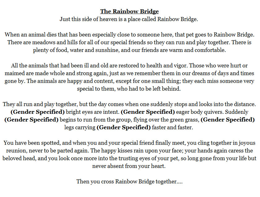 photo about Rainbow Bridge Poem Printable Version identified as Rainbow Bridge Poem Printable Variation - Helicopter and