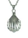 Silver Seashell Pendant