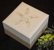 Biodegradable Urn Embrace White Hemp