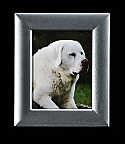 Small Silver Rectangle Photo Frame