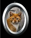 Small Silver Oval Frame Applique