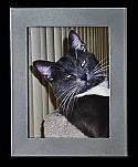 Medium Silver Rectangle Photo Frame