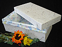 Biodegradable Pet Caskets - (4 sizes)