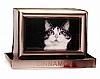 Brushed Nickel Pet Cremation Urn