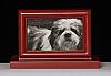Burgundy Pet Cremation Urn