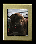 Medium Gold Rectangle Photo Frame