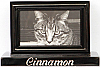 Black Pet Cremation Urn