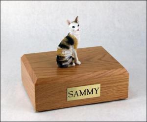 Cornish Rex, Tort-White Sitting Cat Figurine Cremation Urn